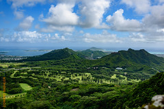 around Oahu (Edi Bhler) Tags: sky mountain plant nature berg clouds natur pflanze himmel wolken 28300mmf3556 nikond810 2015hawaii oahulm