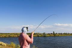 Utah4 (jaev88) Tags: fly utah rainbow fishing flyfishing trout rainbowtrout brookie catchoftheday orvis catchandrelease cotd utahflyfishing falconsledge orviswoodlands