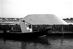 saline di Mozia (federiccibcn82) Tags: blackandwhite boat barca sicily acqua saline sicilia trapani mozia