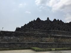Jogja 1311 (raqib) Tags: architecture indonesia temple java shrine buddha stupa buddhist relief jogja yogyakarta yogya buddhisttemple borobudur basrelief magelang candi javanese mahayana buddhistmonastery borobudurtemple djogdja sailendra djogdjakarta