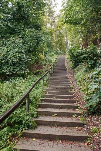 Escalier vers le château de Hohenzollern