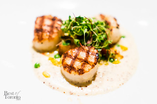 Grilled day-boat scallops and crispy house smoked porkbelly