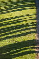 Tourists (maxst001) Tags: vienna wien austria europa belvedere botanicalgarden oesterreich botanischergarten spazieren 3bezirk hortusbotanicusvindobonensis landstrase vienna365 frallewieneryipmembers 2015yip staedteundplaetze 2015ayearinpicures