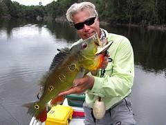 Amazonia 2012 (40)
