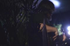 Noches Verdes vol lX Fotografía: María Dante