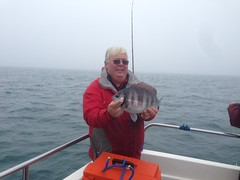 "Roy Shipway's 3lb 8oz Bream • <a style=""font-size:0.8em;"" href=""http://www.flickr.com/photos/113772263@N05/22754233611/"" target=""_blank"">View on Flickr</a>"
