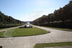 Reggia Parco_46