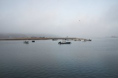 DSC_0875 (Six Sigma Man (Thank you for the 1.9M+ views)) Tags: fog nikon longisland nikond3200 coldspringharbor