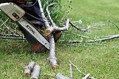 (UNMC College of Public Health) Tags: chainsaw powertool ppe amputationhazard