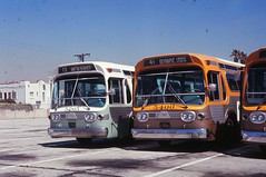 005 RTD 5205-5400 Div 6 19690327 AKW (Metro Transportation Library and Archive) Tags: venice santamonica scrtd division6 alanweeks