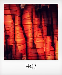 """#DailyPolaroid of 14-11-15 #47 • <a style=""""font-size:0.8em;"""" href=""""http://www.flickr.com/photos/47939785@N05/23682820552/"""" target=""""_blank"""">View on Flickr</a>"""