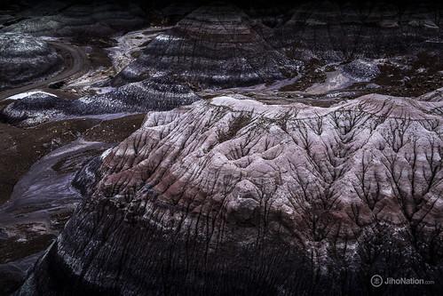 JihoNation-jiho-sohn-baltimore-photography-0016-IMG_8625 petrified-forest-arizona-national-park