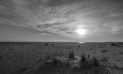 Colorless dusk (IrishRedBeard) Tags: sunset usa water northamerica blacknwhite 2015