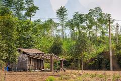 Yulong River farm shack (Bridgetony) Tags: china asia southeastasia guilin farm yangshuo shack karst guanxi asiapacific