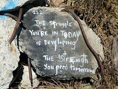 the struggle (Jef Poskanzer) Tags: bulb albanybulb struggle strength geotagged geo:lat=3788809 geo:lon=12232472 t