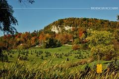 Fall Escarpement Landscape (Jamie Hedworth) Tags: fall fallcolours fallcolors autumn niagaraescarpment escarpment rattlesnakepoint milton ontario canada trees leaves nature countryside jamiehedworthphotography sonydslra390