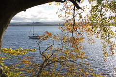 Balmaha Loch Lomond East Side (monyet_uk) Tags: balmaha pod tomweir scotlandunitedkingdom 44