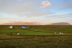 2012.08.09 22.28.08.jpg (Valentino Zangara) Tags: 5star flickr iceland landscape norurlandeystra islanda is