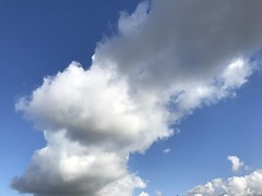 October 02, 2016 at 12:34PM (Mr T UK) Tags: ios photos cloud clouds sky outdoor blue white grey dark light sun sunshine cloudy clear overcast iphoneography mobile 365days 365day project365 cloud365