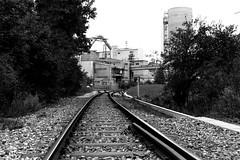 On the line (Nikon F801) (stefankamert) Tags: stefankamert ontheline line railway railwayline industrial bw sw naw noir noiretblanc monochrome nikon f801 nikonf801 n8008 ilford hp5 voigtländer ultron slr analog film