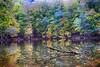 BİR YEDİGÖLLER FOTOĞRAFI (COSKUNTUNA ... 1.999.000 ... THANK YOU) Tags: coskuntuna 2016 canon70d eos70d eralpege 3e canon clouds turkey türkiye travel yedigöller yedigoller autumn x colouds view visit beauty beautiful bravo blue natura nature manzara gezi eos reflection random rainbow yellow