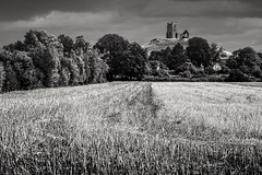 Church on the mump (Anthony Plancherel) Tags: barrowmump category england landscape places somerset travel hill mump travelphotography blackandwhite whiteandblack bw uk unitedkingdom britain greatbritain british english landscapephotography farm trees crop church ruin derelict decay placeofworship landmark clouds sky cloudysky monochrome outdoor outside somersetlevels canon70d canon canon1585mm sunshine summer field farming agriculture hay