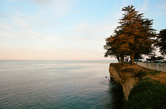Santa Cruz (Houlton Mahaney) Tags: california santa cruz santacruz ocean water beach cliff trees beautiful film istillshootfilm filmisnotdead canon canona1 kodak kodakportra portra