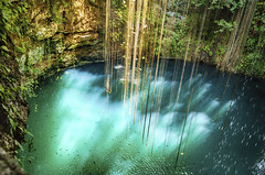 Cenote de Chichen Itza (Voyages Lambert) Tags: nopeople cenote geology mayan idyllic blue deep hole famousplace tropicalclimate nature yucatan mexico root cave lagoon lake sinkhole ikkil