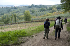 hikers in Umbria, Italy (tcd123usa) Tags: italyparislondon2016 leicadlux4 umbria italy hikers autumn italianlandscape grapevines