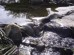 Dia_2_Agua (slopezser) Tags: agua lisa suave rugosa