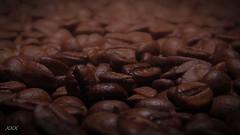 Together we're strong (babs van beieren) Tags: coffee beans coffeebean brown macro breakfast dof depthoffield 7dwf wednesday closeup