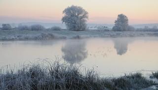 Die Treene an einem frostigen Morgen; Norderstapel, Stapelholm (4)
