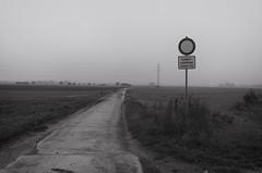 23. Oktober 2016 (Manfred Hofmann) Tags: brd feld jahreszeiten kurpfalz orte projekte themen flickr ffentlich pfalz