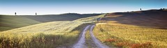 Tuscan Road (rubberducky_me) Tags: tuscany italy valdorcia linhof film technorama panorama farm road country hills sunset light