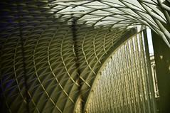 DSC_1376 [ps] - Under the Peacock (Anyhoo) Tags: anyhoo photobyanyhoo kingscross kingscrossstation london england uk new modern architecture refurbishment rebuild canopy roof sweep arch vault truss lattice grid repetition geometric kgx johnmcaslanpartners