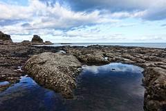 Rock pool view (nagillum) Tags: velvia shore whitburn wherry sea seashore coast nagillum