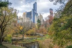 Central Park (JMS2) Tags: centralpark autumn fall cityscape scenic landscape skyscrapers manhattan newyorkcity