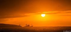 Towards the Sun (IrreBerenT) Tags: sunset sea summer sky sun fish port boat mar fishing explore fishingboat cantabria sanvicentedelabarquera marcantabrico towardsthesun barcopesquero sounrise irreberente pescadecerco justolecue