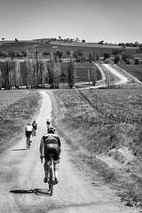 gravel to cootamundra (AlistairKiwi) Tags: travel nature bike bicycle outdoors cycling sony australia nsw mk2 transfer velo wagga rapha bikeporn cootamundra rx100 gearsandbeers bikelyf dirty130