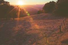 California Dry 4. (Photo Works by Laszlo) Tags: california statepark park county sunset mountain grass 35mm lomo lomography mood moody state f14 country hill sigma dry flare land eastbay diablo mtdiablo laszlo mountdiablo contracosta mountdiablostatepark rekasi sigmaart