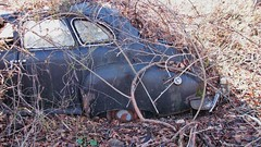 1946-48 NASH SUPER'''STUCK FOR A LONG TIME (richie 59) Tags: auto autumn trees usa ny newyork fall abandoned broken overgrown car america sedan us vines weeds rust automobile unitedstates weekend rusty saturday faded chrome rusted abandonedhouse vehicle rusting newyorkstate nash sideview taillights nys rustycar backend wornout nystate rustycars rustyoldcars rustyoldcar hudsonvalley blackcar americancar 2015 rustedout fadedpaint ulstercounty 1940scar abandonedcars motorvehicle 4door midhudsonvalley fourdoor midhudson ulstercountyny 4doorsedan fourdoorsedan americansedan 2010s nashsuper oldsedan townoflloyd richie59 rustynash townoflloydny nov2015 nov212015