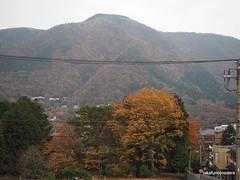 PB220906 (takafumionodera) Tags: japan olympus hakone omd em1   goura