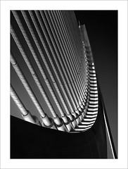 Tirants (ximo rosell) Tags: bridge blackandwhite bw blancoynegro luz valencia arquitectura nikon bn calatrava d750 ciudaddelasciencias llum detall 2015 tirantes cablestayedbridge ximorosell