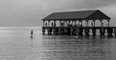 Paddleboarding (Tim Gupta) Tags: blackandwhite monochrome island hawaii pier kauai hanaleibay