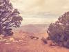 Grand Canyon (Drachenfanger) Tags: travel family arizona usa love nature grandcanyon roadtrip passion lovely navajo hopi i40 us264 photosophie drachenfanger