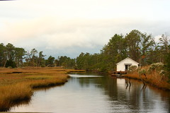 a little place on the water (duckydoo) Tags: water marsh forest house morning chincoteague calm reflection island