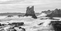 Cathedral Rock Kiama 4081 (russell.bray) Tags: cathedralrock kiama nsw australia bw