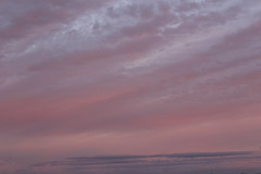 Sky for Dreamers (colorinspirit) Tags: dusk tenderness silent lightweight pleasant pastelcolors sunsetsky kisses pink peach purple calmness halftone lovesky inlove