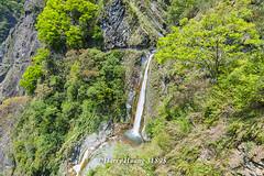 Harry_31895,,,,,,,,,,,,,,,,Yunlung Waterfall,Yushan National Park (HarryTaiwan) Tags:                yunlungwaterfall yushannationalpark     harryhuang   taiwan nikon d800 hgf78354ms35hinetnet adobergb nationalpark nantou