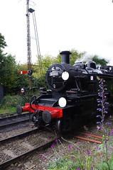 IMGP5580 (Steve Guess) Tags: ropley medstead fourmarks alton alresford hants hampshire england gb uk steam loco train railway locomotive lms tank 2mt 41312 british railways